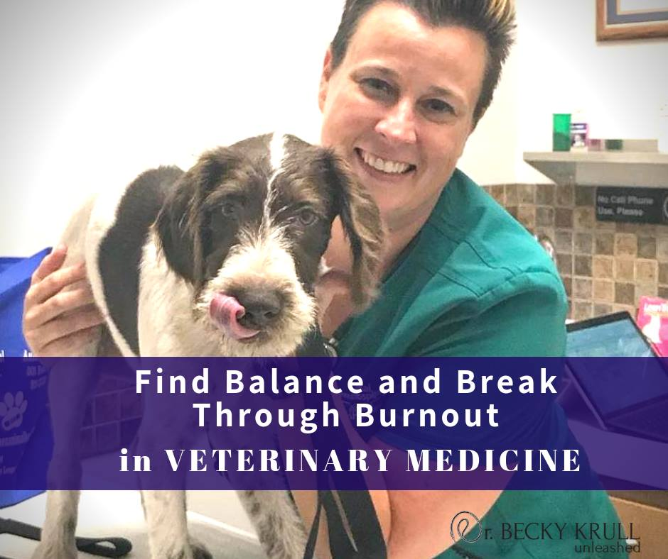 Veterinary Medicine Burnout