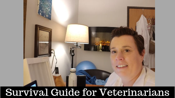 Self-care and How to Care for a Veterinarian